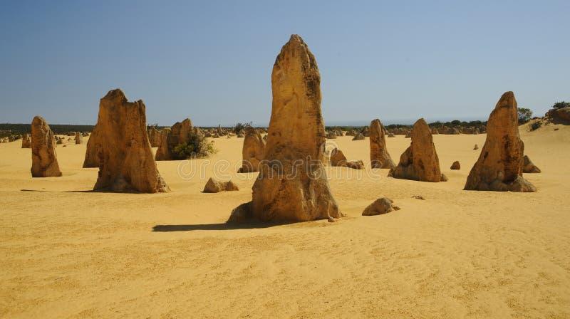 De toppen in West-Australië royalty-vrije stock fotografie
