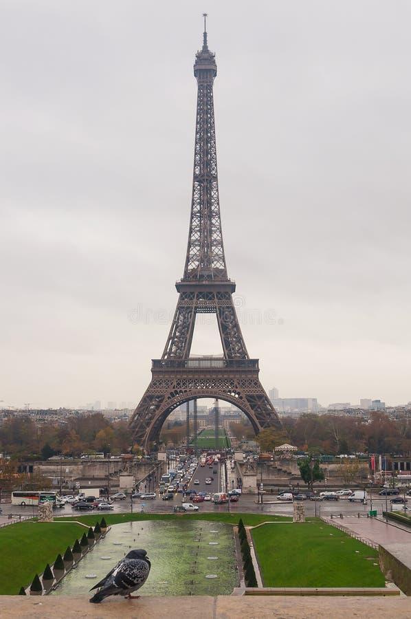 De toren en de duif van Eiffel De mening van het vierkant van vrijheid en rechten van de mens royalty-vrije stock foto's