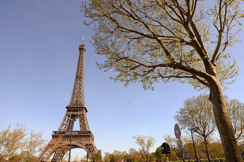 De Toren van Eiffel in de lente royalty-vrije stock foto