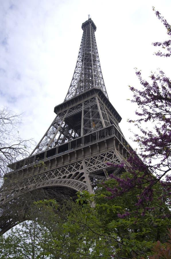 De Toren van Eiffel in de lente stock afbeeldingen