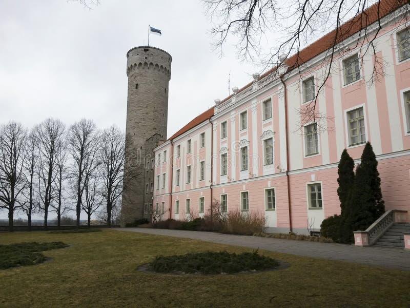 De toren van Pikkherman van de Toompea-heuvel in Tallinn stock foto