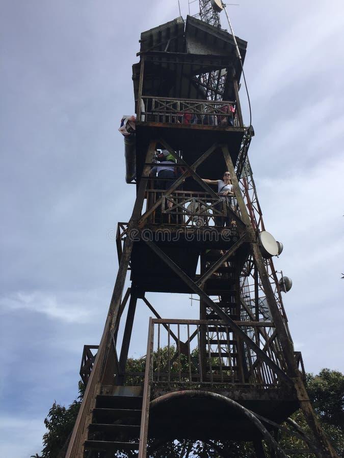 De toren van de theeaanplanting in Maleisië stock foto's