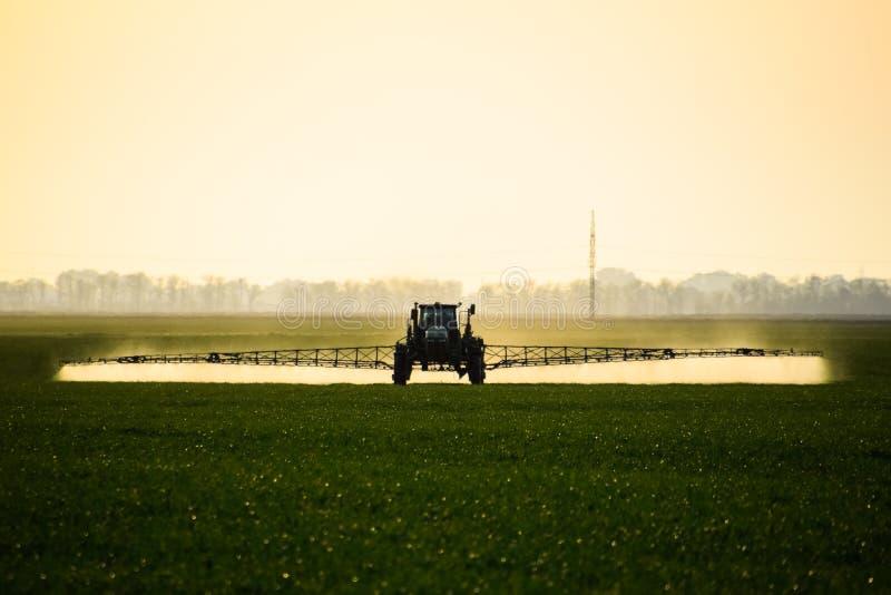 de tractor met behulp van een spuitbus bespuit vloeibare meststoffen op jonge tarwe op het gebied stock afbeelding