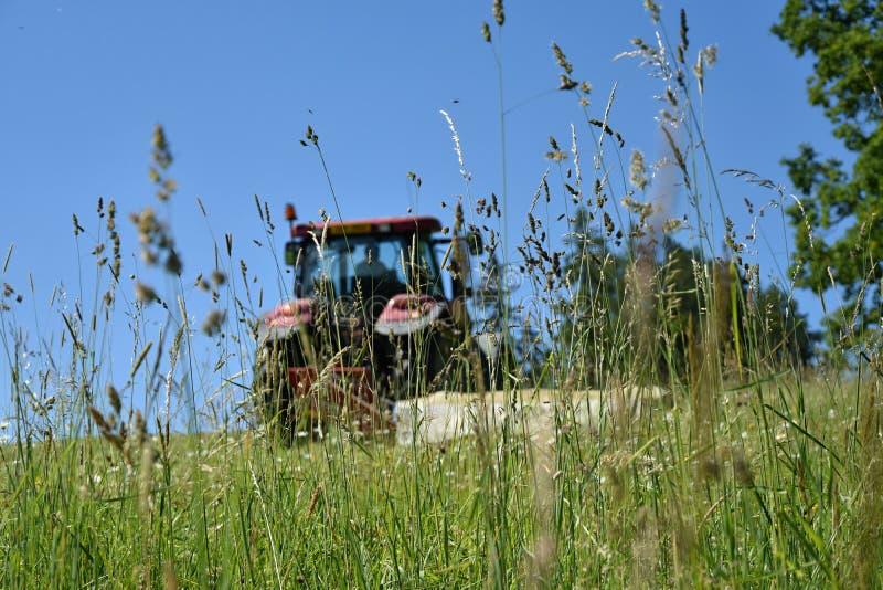 De tractor snijdt het gras op de weide Nadruk op gras stock foto's