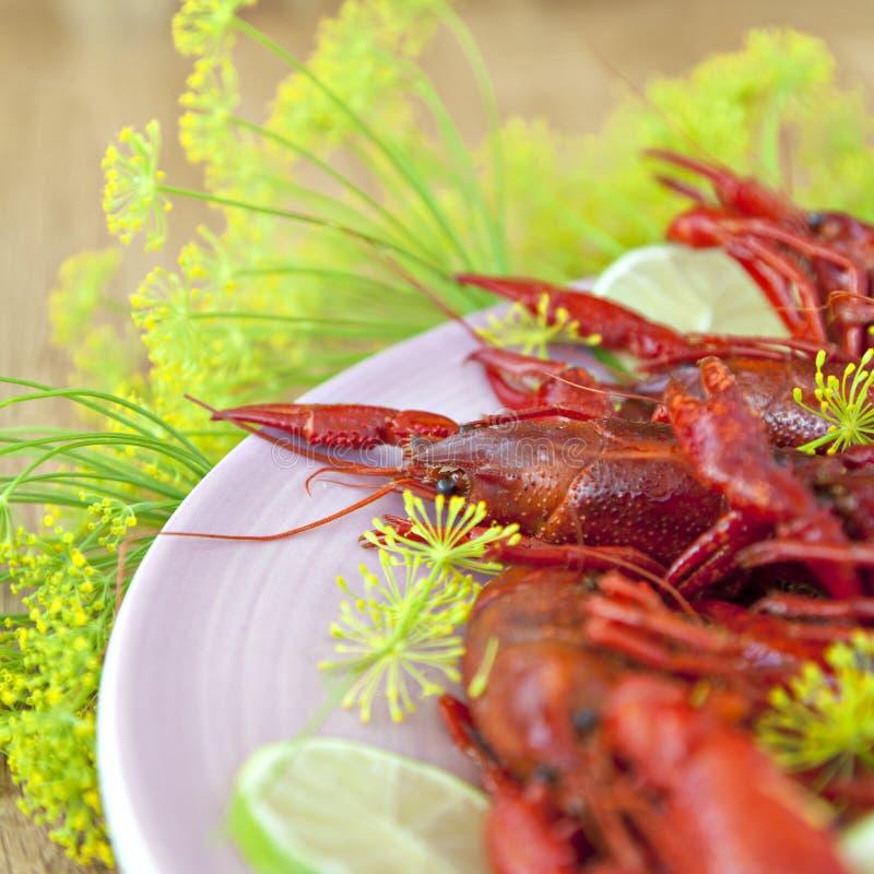De traditionele Zweedse maaltijd van de rivierkreeftenvakantie royalty-vrije stock afbeelding