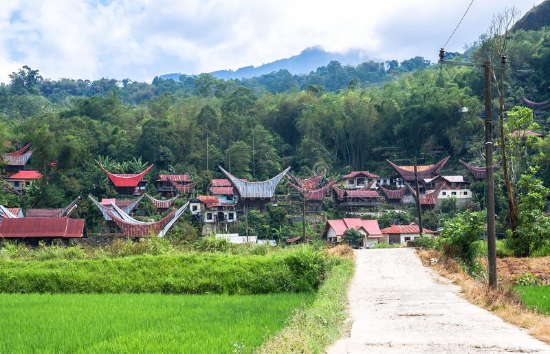 De traditionella byarna på Tana Toraja, Sulawesi arkivfoto