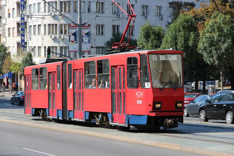 De tram van Belgrado stock foto's