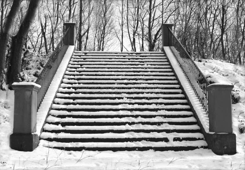 De trap van de winter royalty-vrije stock fotografie