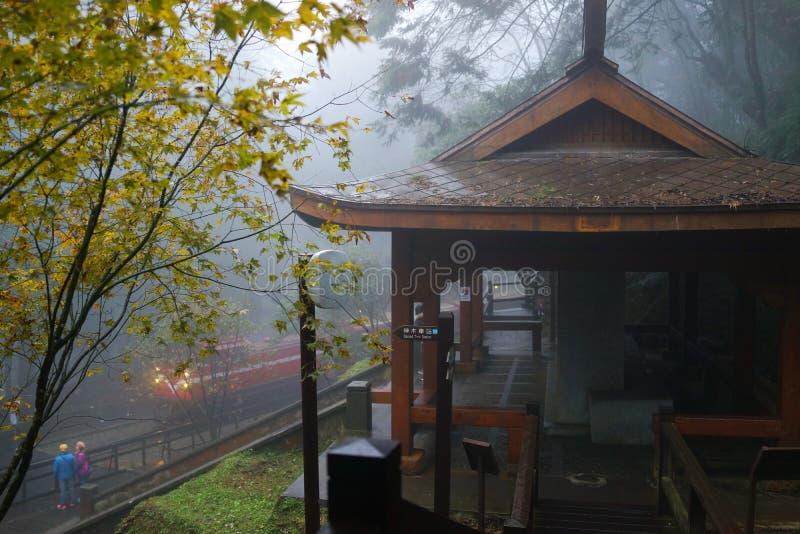 De trein in de mist royalty-vrije stock fotografie