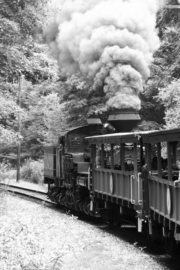 De trein van de stoom in sneeuw stock foto