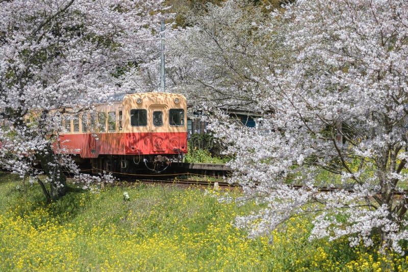 De Trein van Kominatotetsudo stock foto's