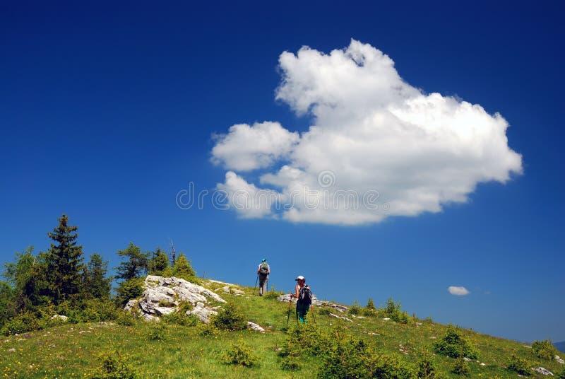 De trekking van de zomer royalty-vrije stock afbeelding