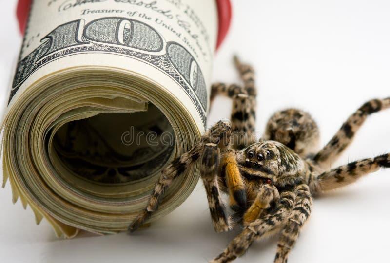 De tribunewacht van het gevaar - vergiftspin en geldbroodje stock foto