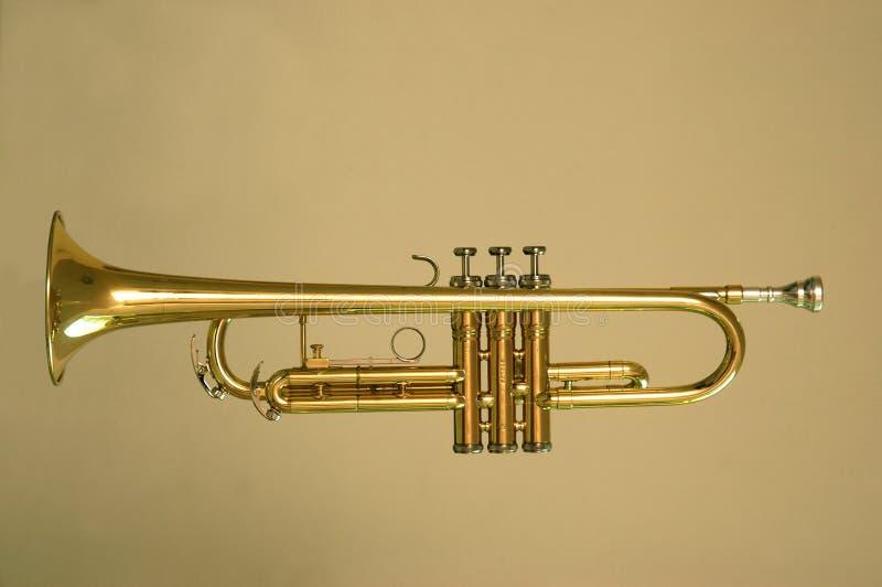Or de trompette photos stock