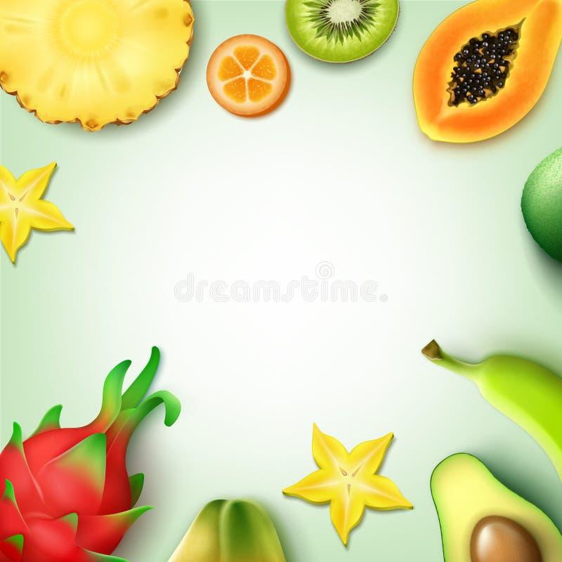De tropische Achtergrond van Vruchten vector illustratie