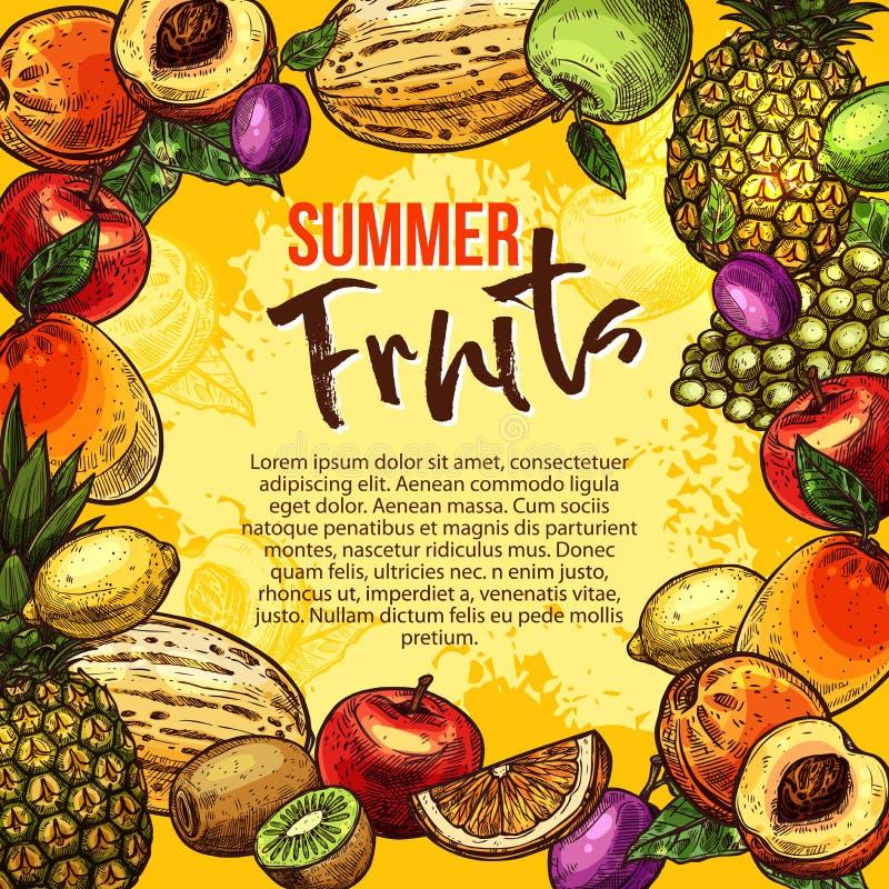 De tropische affiche van de fruitschets van het kader van de de zomerbes royalty-vrije illustratie