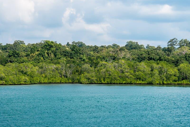 De tropische Banner van het Strand Blauwe overzees stock afbeelding