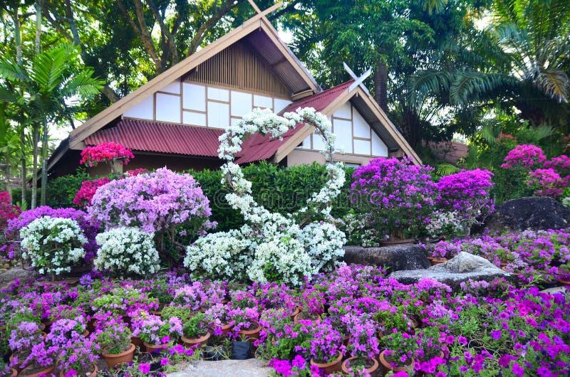 De Tropische Botanische Tuin van Nongnooch in Pattaya, Thailand stock afbeeldingen