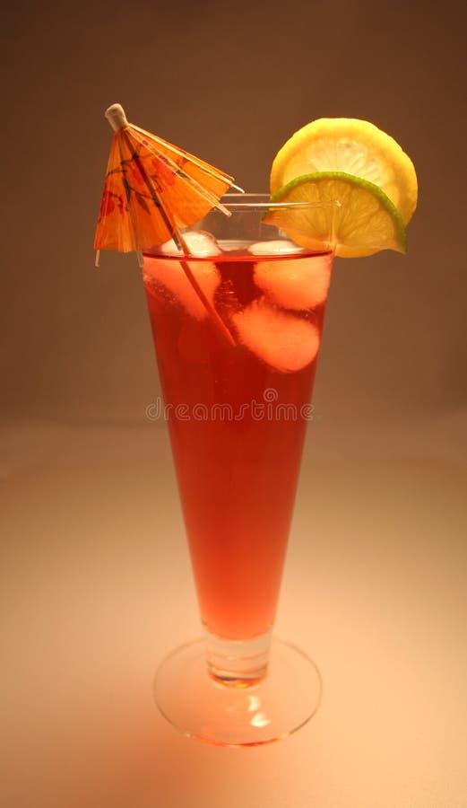 De tropische Drank van de Zomer stock foto's