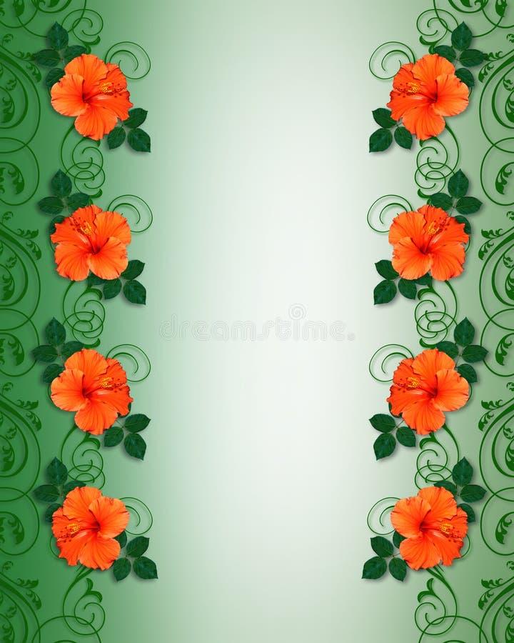 De tropische Hibiscus bloeit Grens stock illustratie