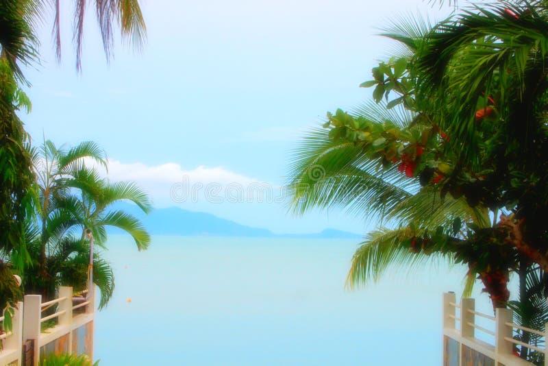 De tropische oceaanreis van het strandparadijs royalty-vrije stock afbeelding