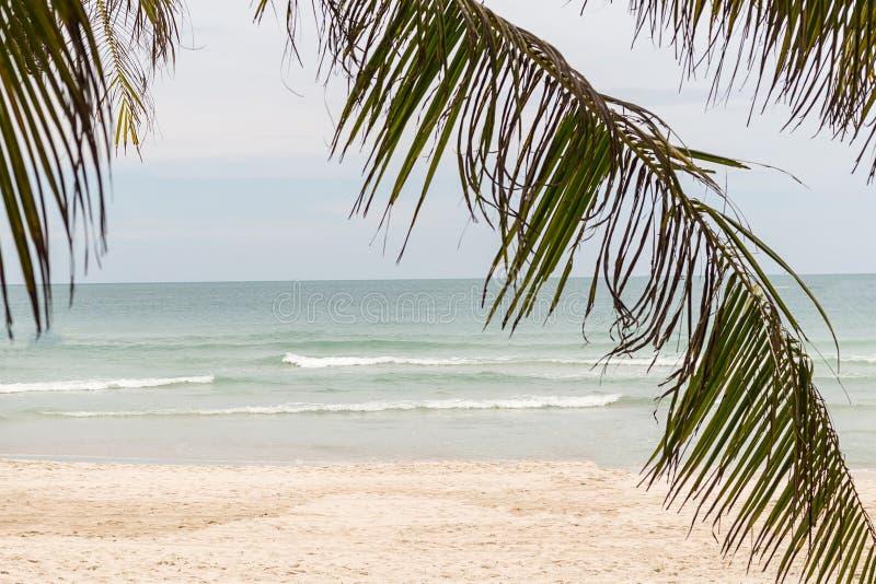 De tropische rust van de het sneeuwwitte strand oceaan zonnige dag van de achtergrondontwerpbasis ontspant royalty-vrije stock afbeelding
