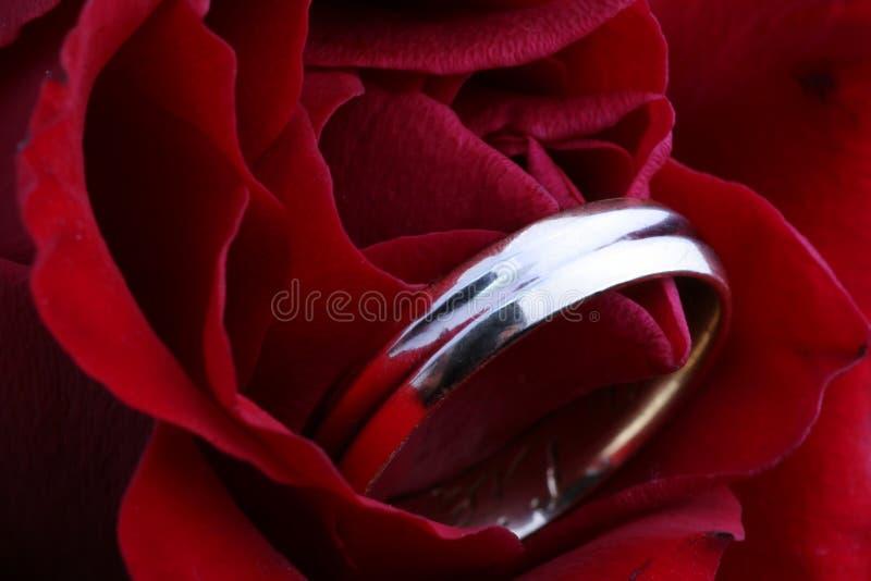 De trouwring in nam toe stock fotografie