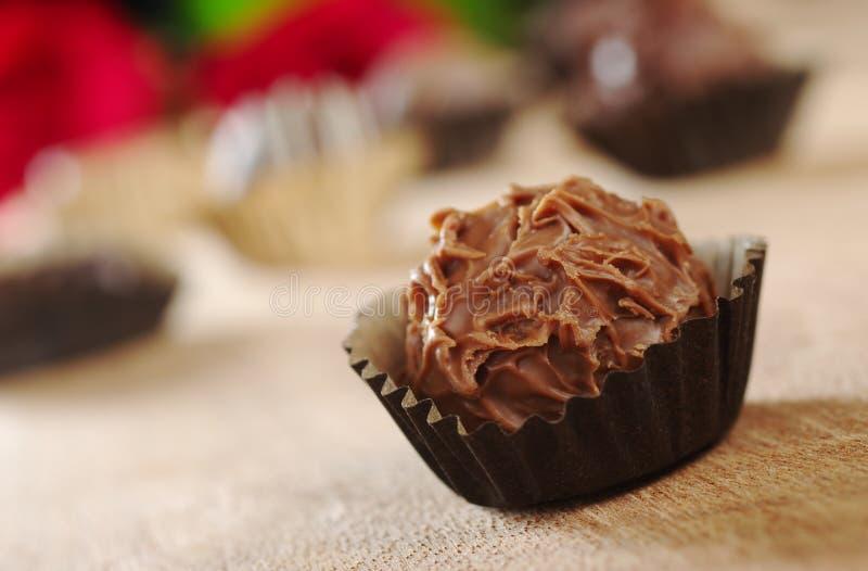De Truffel van de chocolade royalty-vrije stock fotografie