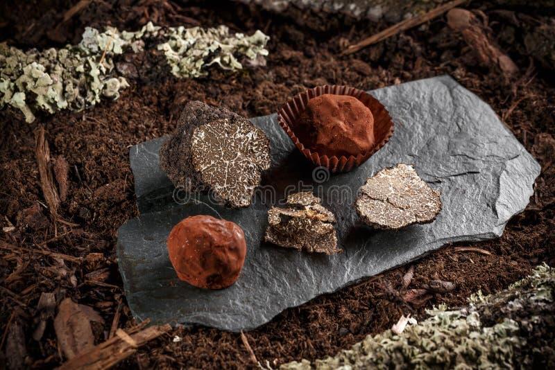 De truffels van de veganistchocolade royalty-vrije stock fotografie