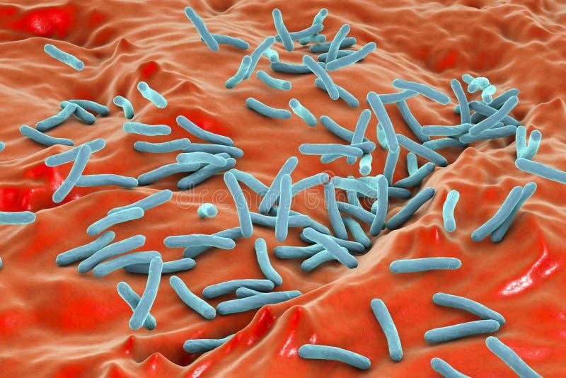 De tuberculose van de bacteriënmycobacterie stock illustratie