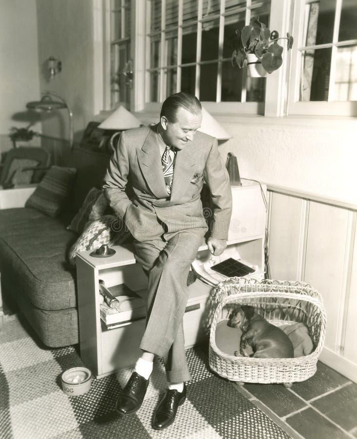 De Tuckered dormido rápido del perro basset hacia fuera en cesta imagen de archivo