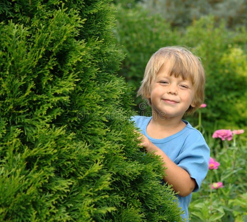 In de tuin stock afbeelding