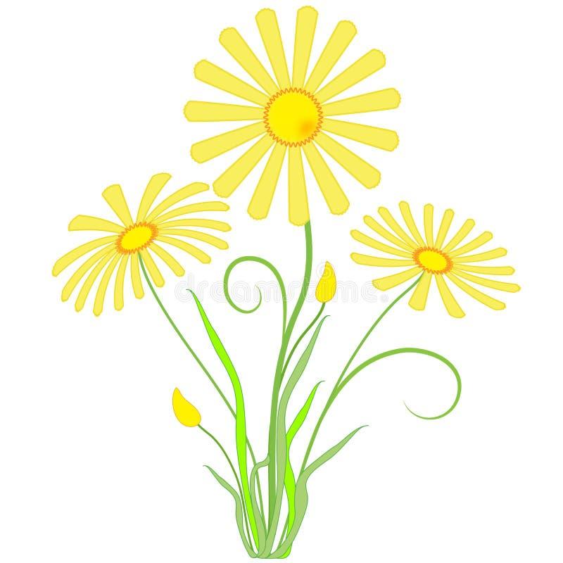 De tuin bloeit goudsbloemen vector illustratie