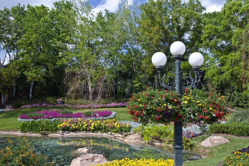 De tuin en de pool van de bloem royalty-vrije stock afbeelding