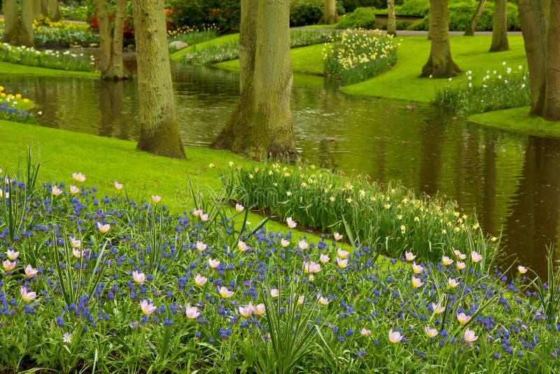 De tuin Keukenhof, Nederland van de lente royalty-vrije stock afbeeldingen