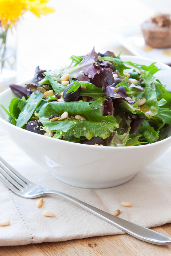 De tuin maakt salade groen royalty-vrije stock afbeelding