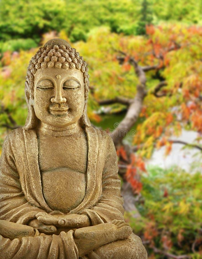 De Tuin van Boedha stock afbeeldingen