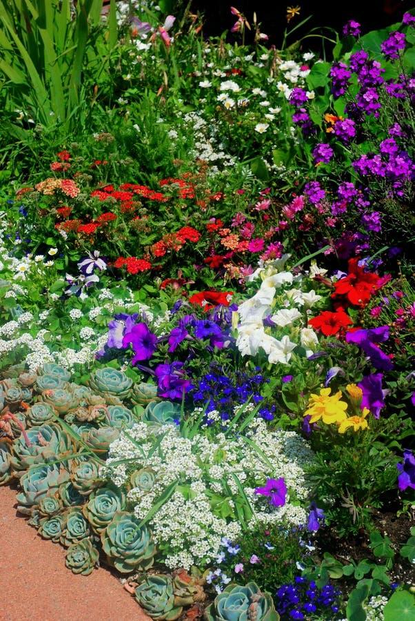 De Tuin van de bloem royalty-vrije stock afbeeldingen