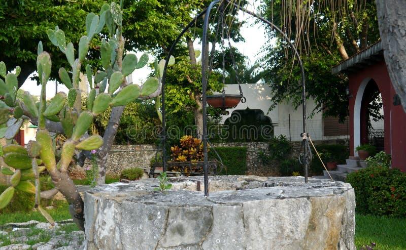 De tuin van de de zomertijd bloeit het huis van decoratieinstallaties het leven royalty-vrije stock afbeeldingen