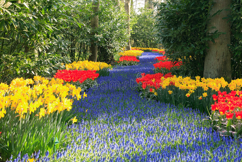 De tuin van de lente royalty-vrije stock fotografie