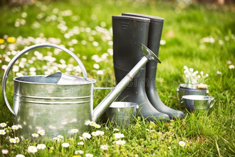 De tuin van de lente stock foto