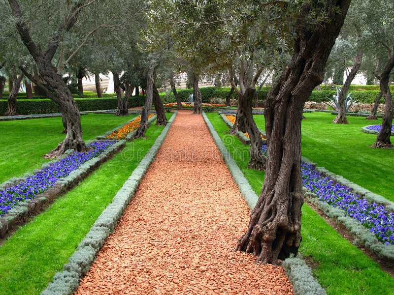 De tuin van de olijfboom, Bahai Tempel, Haifa, Israël royalty-vrije stock afbeeldingen