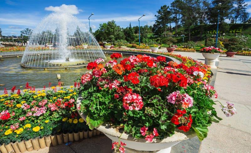 De tuin van de stadsbloem in Dalat, Vietnam royalty-vrije stock afbeeldingen