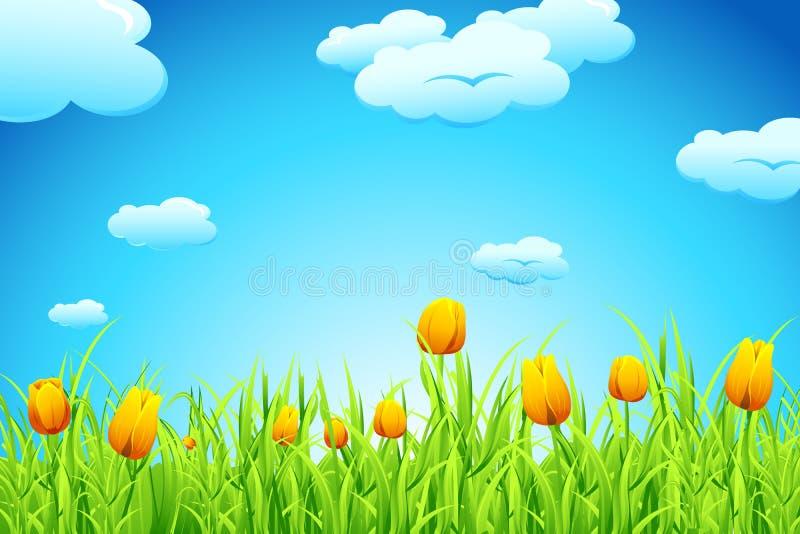 De Tuin van de tulp vector illustratie