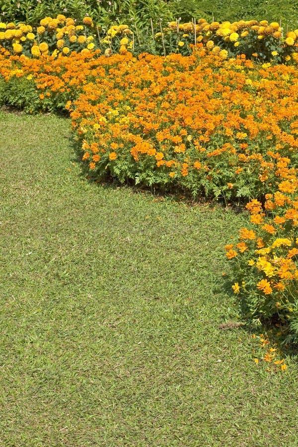De Tuin van de zomer royalty-vrije stock fotografie