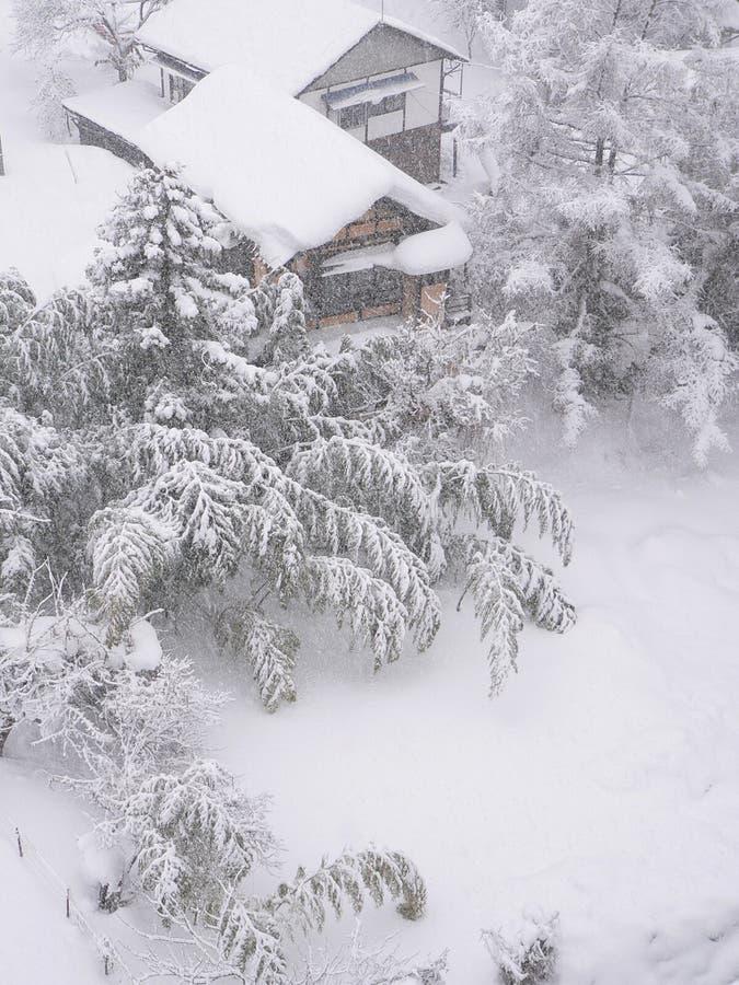 De tuin van het bamboe onder de sneeuw stock afbeelding
