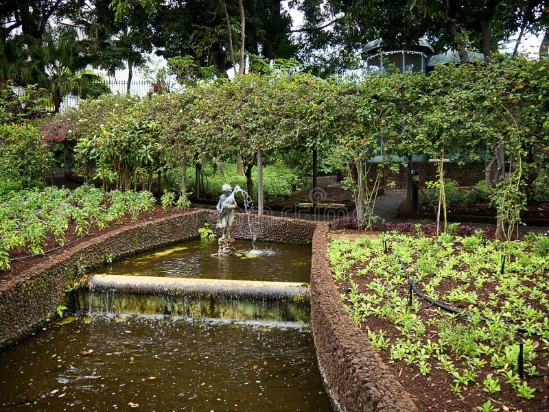 De Tuin van het Gouverneurspaleis op het Eiland Madera Portugal royalty-vrije stock afbeelding