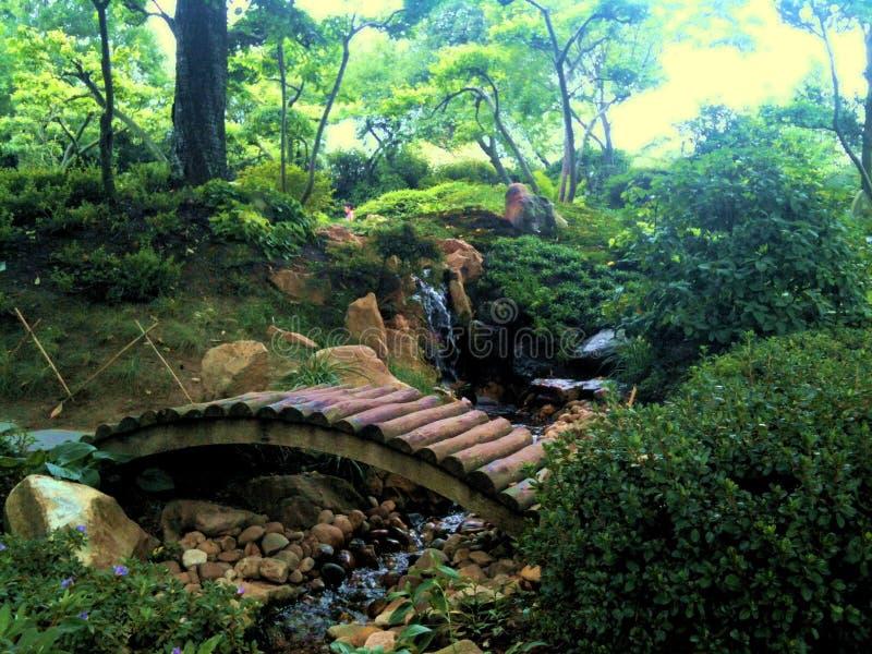 De tuin van Japenese stock afbeeldingen
