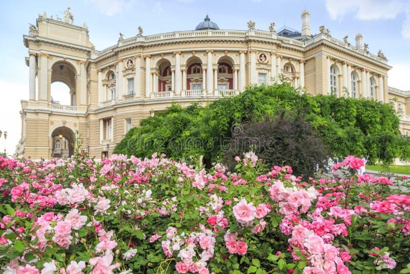 De tuin van Odessa met roze rozen met het ballet en de operahuis van Odessa in Odessa, de Oekraïne stock foto's