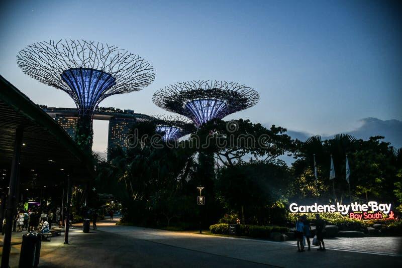 De tuin van Singapore Boedha, chinatown Supertrees in Tuinen door de Baai, op het gebied van de jachthavenbaai in Singapore wordt stock foto
